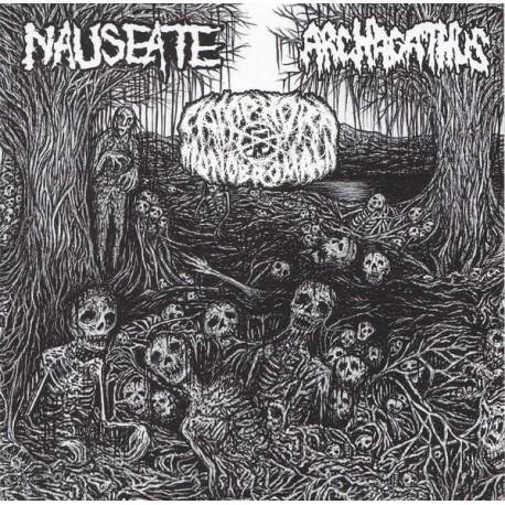 Nauseate / Camphora Monobromata / Archagathus - 3-Way Split - CD