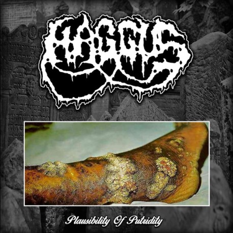 Haggus ‎– Plausibility Of Putridity - Yellow LP