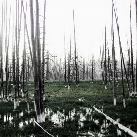 Seventh Genocide – SVNTH - CD