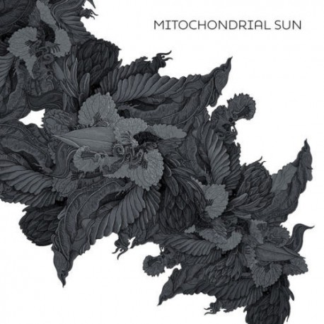Mitochondrial Sun – Mitochondrial Sun - CD-Digi