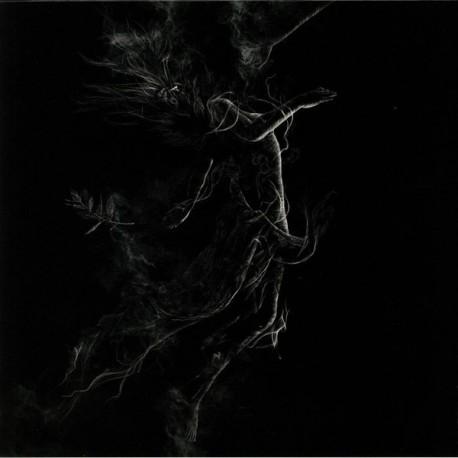 Jarboe – Illusory - LP