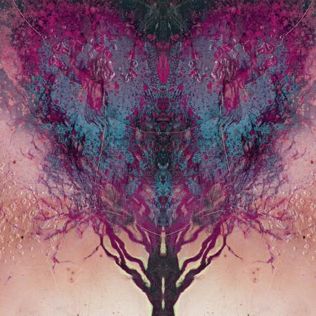 """Tõll / Radien – Split 7"""""""