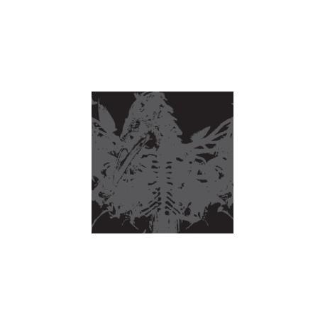 Amenra - MASS II (Clear & silver edition) - LP