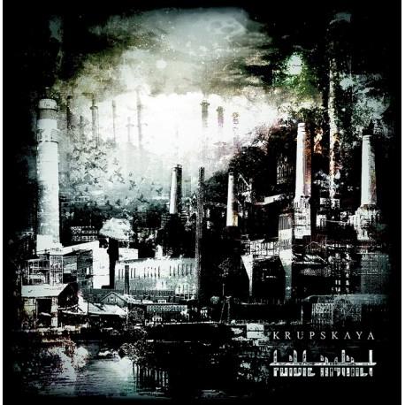 Krupskaya / Foible Instinct - Split - LP