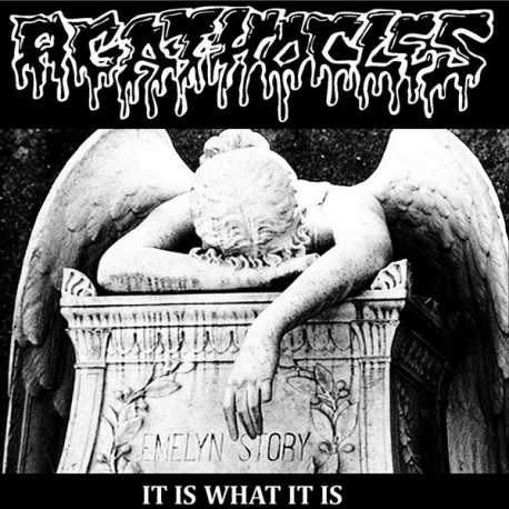 Agathocles ‎– It Is What It Is - CD